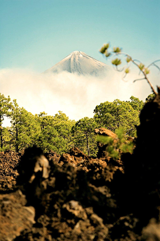 Wandelen met zicht op Pico del Teide