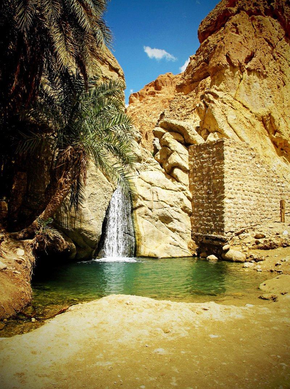 Oasesafari in de Sahara Tunesië