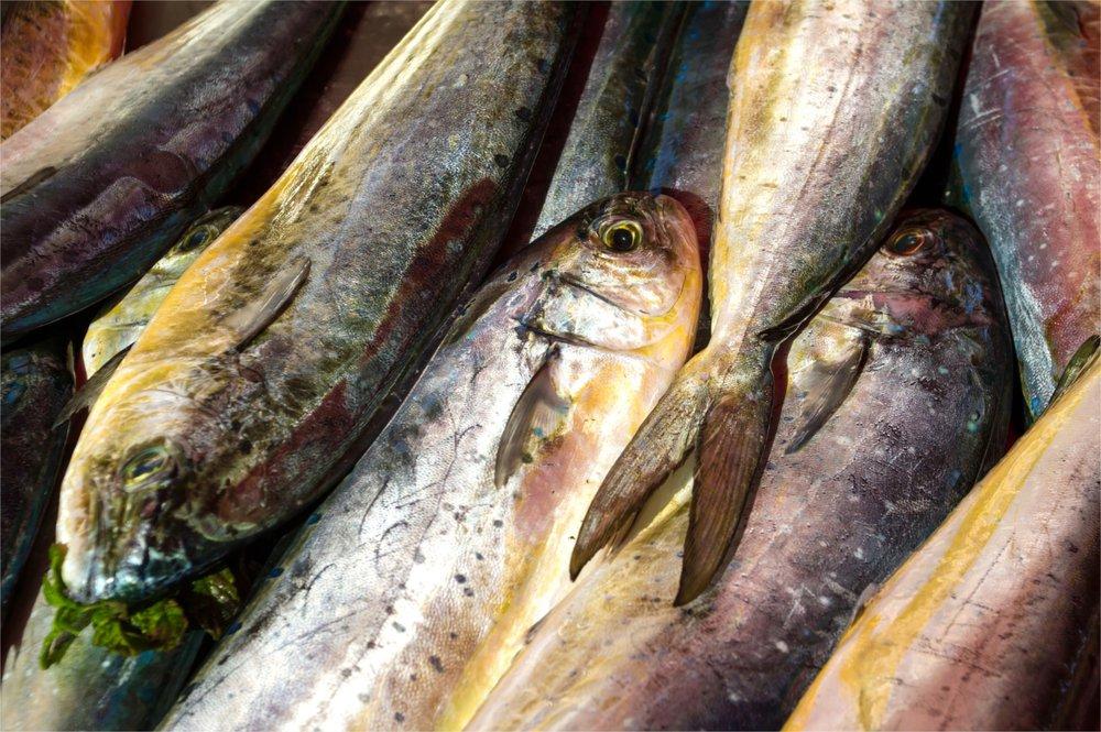 4 délices de Malte dans votre assiette