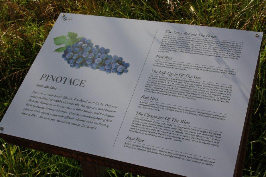 Stellenbosch: wijn proeven met de kids