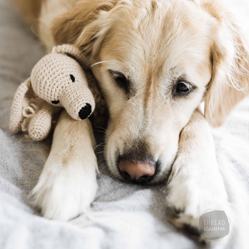 TOFT-Crochet-Kit-Golden-Retriever
