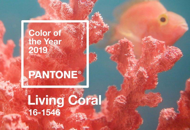 2019 Pantone living coral