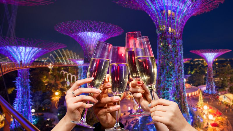 Champagne%20glasses%20clinking%20at%20Gardens%20by%20the%20Bay%2C%20Singapore