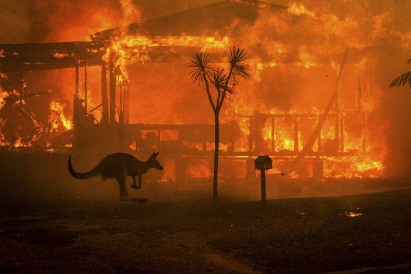 Australia%20bushfires
