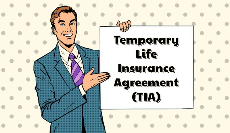 How Does Temporay Life Insurance Work Who Can Qualify Examples