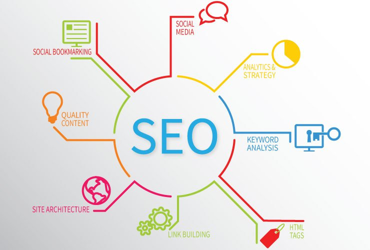 Professional seo services link management