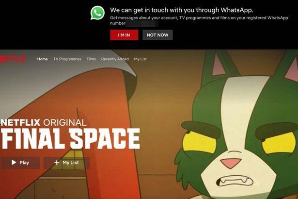 Netflix WhatsApp Notification Prompt