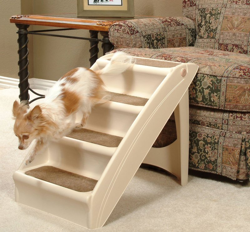 Best Gifts for Pets- Dog Ramp