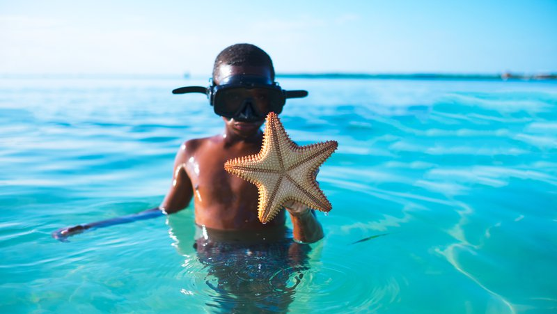 A boy wearing scuba goggles holds an alien looking starfish.