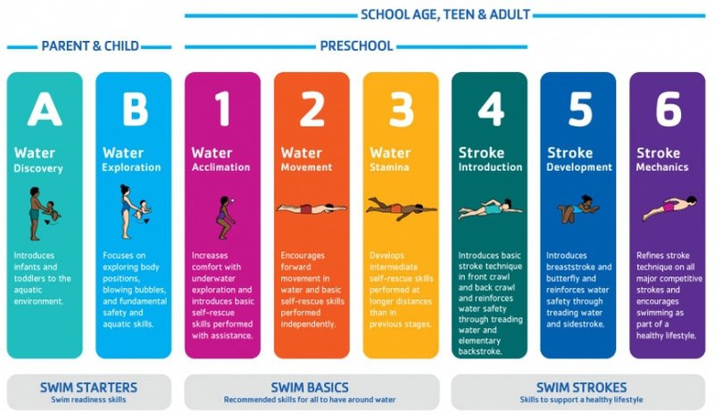 A diagram showing the various swimming levels you may encounter on your swimming journey.