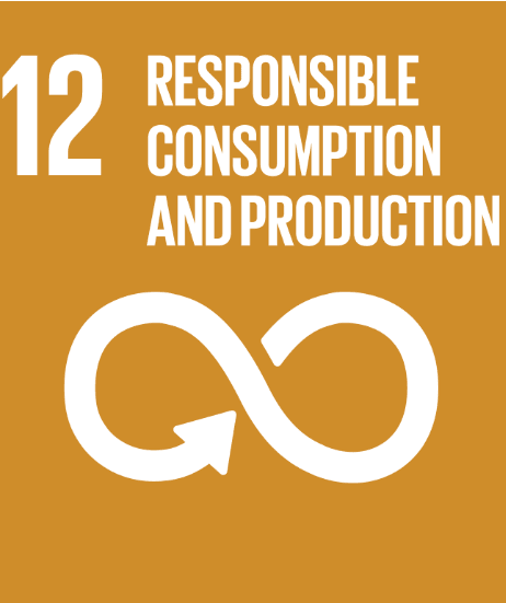 Web Summit 2018 UN SDG 12: Responsible Consumption and Production